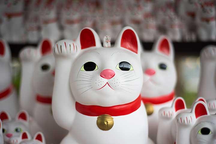 equity crowdfunding rappresentato dal gatto portafortuna cinese maneki neko